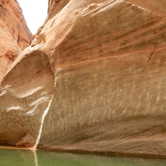 Reflection of Ripples on Sandstone
