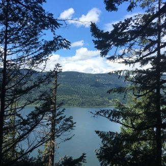 Columbia River Gorge from Larch Mountain Trail