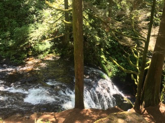 Waterfall along Larch Mountain Trail