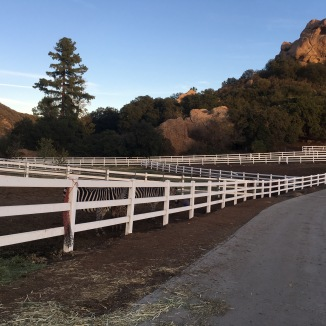 Saddleback Ranch