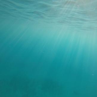Snorkel Lanai