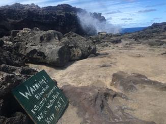 Warning Signs at Nakalele Blowhole