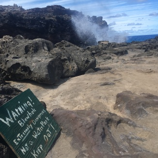 Warning Signs at Nakalele Blowhole
