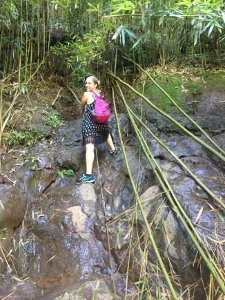 Na'ili'ili'-Haele Trail Rope Climb to Waterfall