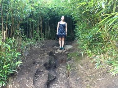 Na'ili'ili'-Haele Bamboo Forest