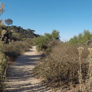 San Elijo Lagoon Trail