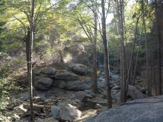 Heart Rock Trail